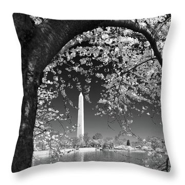 Throw Pillow featuring the photograph Peace And Harmony by Mitch Cat