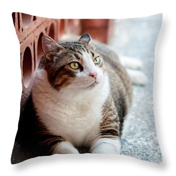 Throw Pillow featuring the photograph Peace by Laura Melis