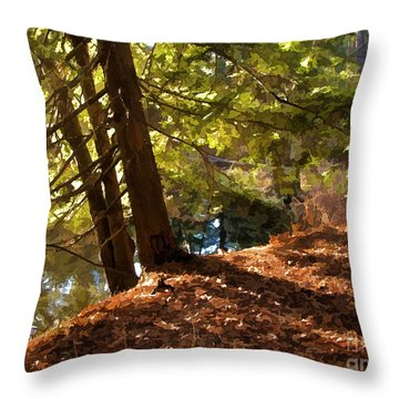 Throw Pillow featuring the photograph Peace On Earth by Betsy Zimmerli