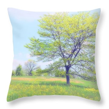 Peace On The Hillside Throw Pillow