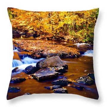 Peaceful Autumn Afternoon  Throw Pillow
