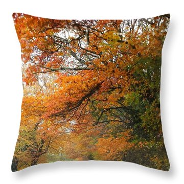 Peaceful Autumn Road Throw Pillow