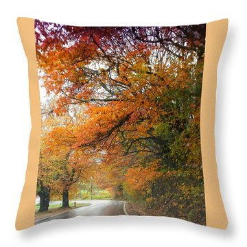 Peaceful Autumn Road Throw Pillow