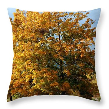 Peaceful Country Road Throw Pillow by Will Borden
