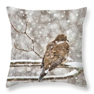 Throw Pillow featuring the photograph Peaceful by Debbie Stahre