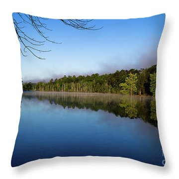 Throw Pillow featuring the photograph Peaceful Dream by Douglas Stucky