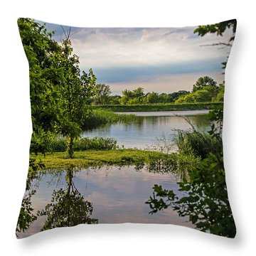 Peaceful Evening Throw Pillow by Alana Thrower