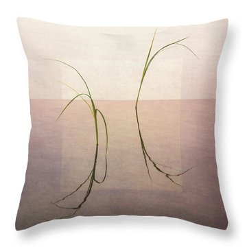 Throw Pillow featuring the photograph Peaceful Evening by Ari Salmela