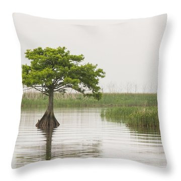 Throw Pillow featuring the photograph Peaceful Feeling by Julie Andel