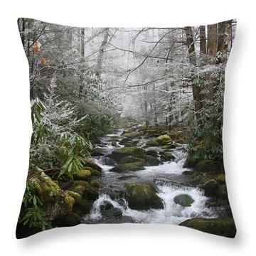 Peaceful Flow Throw Pillow by Andrei Shliakhau