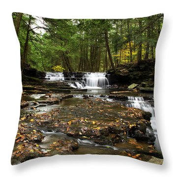 Peaceful Flowing Falls Throw Pillow