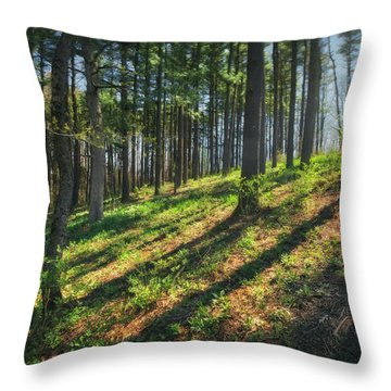 Peaceful Forest 4 - Spring At Retzer Nature Center Throw Pillow by Jennifer Rondinelli Reilly - Fine Art Photography