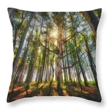 Peaceful Forest 5 - Spring At Retzer Nature Center Throw Pillow by Jennifer Rondinelli Reilly - Fine Art Photography