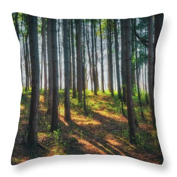 Peaceful Forest - Spring At Retzer Nature Center Throw Pillow by Jennifer Rondinelli Reilly - Fine Art Photography