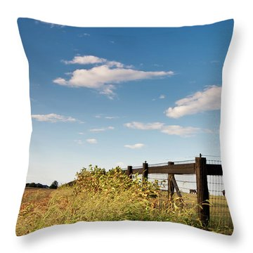 Peaceful Grazing Throw Pillow by David Sutton