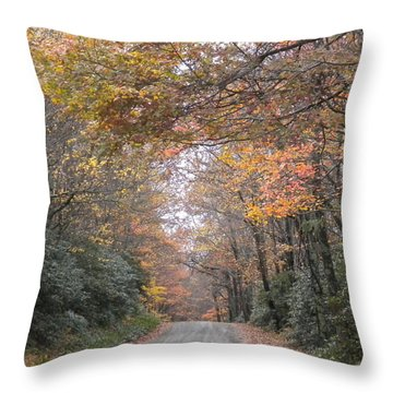 Throw Pillow featuring the photograph Peaceful Journey Home by Diannah Lynch