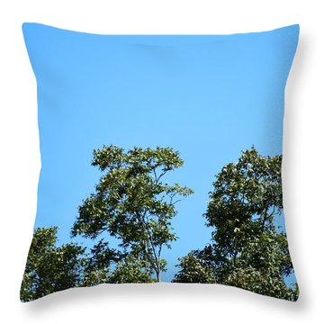 Throw Pillow featuring the photograph Peaceful Moment by Ray Shrewsberry