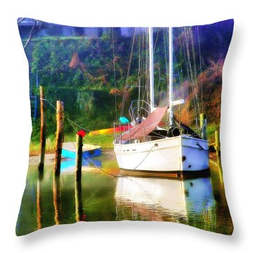 Throw Pillow featuring the photograph Peaceful Morning In The Cove by Brian Wallace