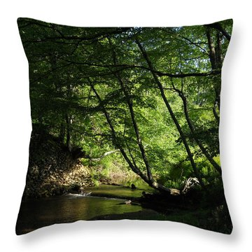 Throw Pillow featuring the photograph Peaceful Mountain Stream by Diannah Lynch