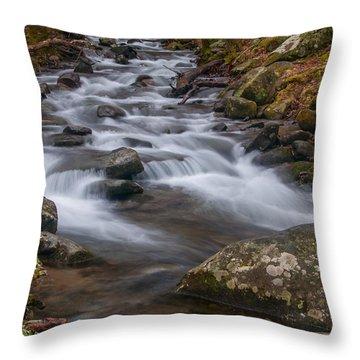 Peaceful Mountain Stream Throw Pillow