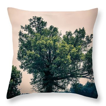 Peaceful Place Along Busy Highway  Throw Pillow by Off The Beaten Path Photography - Andrew Alexander