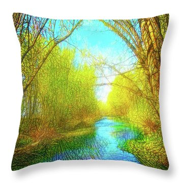 Peaceful River Spirit Throw Pillow by Joel Bruce Wallach