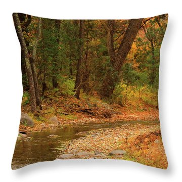 Peaceful Stream Throw Pillow by Roena King