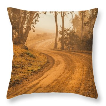 Peaceful Tasmania Country Road Throw Pillow