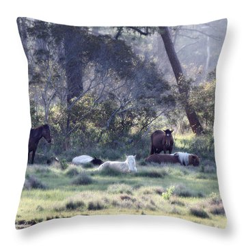Peaceful Water 2 Throw Pillow