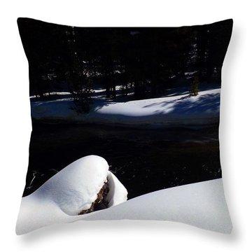 Peaceful Winter Scene Throw Pillow