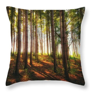 Peaceful Wisconsin Forest 2 - Spring At Retzer Nature Center Throw Pillow by Jennifer Rondinelli Reilly - Fine Art Photography