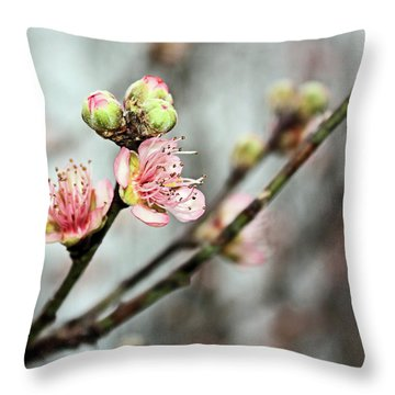 Throw Pillow featuring the photograph Peach Blossom by Kristin Elmquist