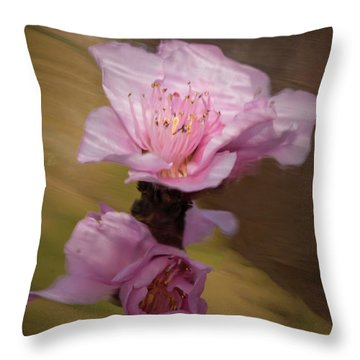 Throw Pillow featuring the photograph Peach Blossom Through Glass by David Waldrop