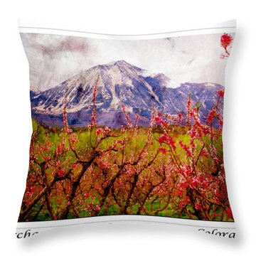 Peach Blossoms And Mount Lamborn Orchard Valley Farms Throw Pillow