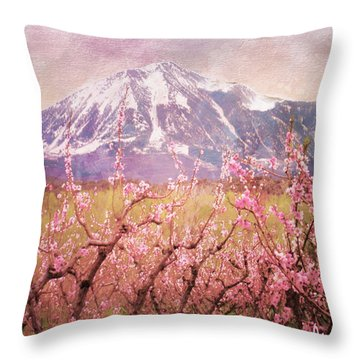 Peach Blossoms And Mount Lamborn V Throw Pillow