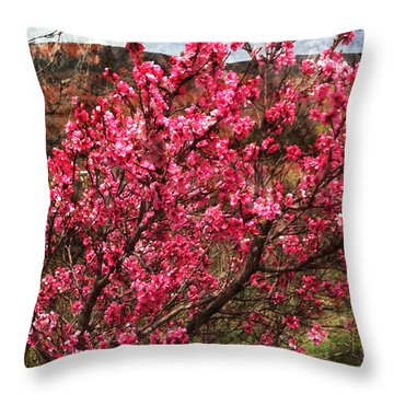 Peach Blossoms Chimayo Throw Pillow