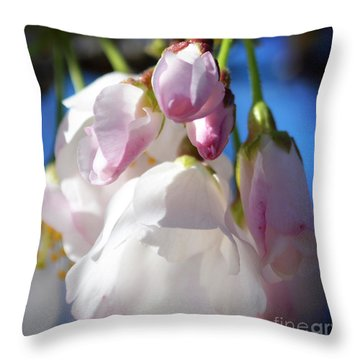 Peach Blossoms Upclose And Personal Throw Pillow