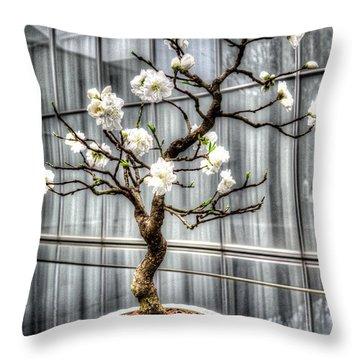 Peach Bonsai Tree Throw Pillow