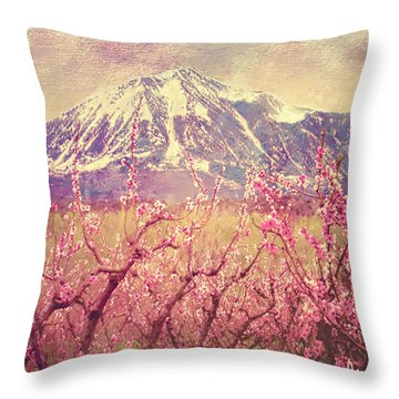 Peach Booms And Mount Lamborn Throw Pillow