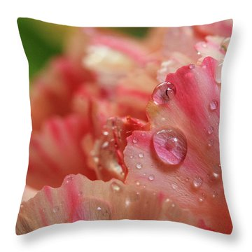 Peach And Pink Carnation Petals Throw Pillow