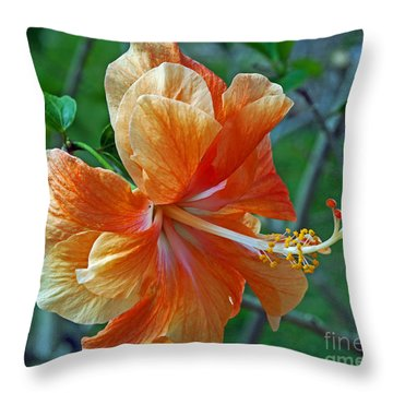 Peachy Hibiscus Throw Pillow by Larry Nieland