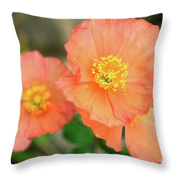 Peach Poppies Throw Pillow by Sally Weigand