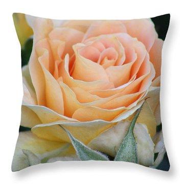 Peach Rose 2 Throw Pillow