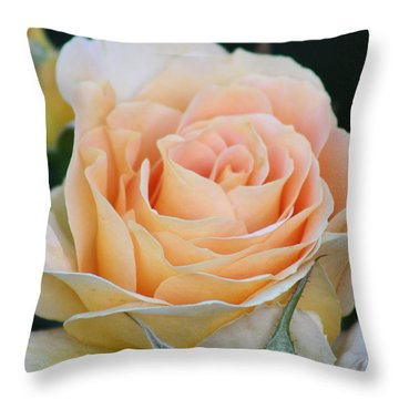 Peach Rose 2 Throw Pillow