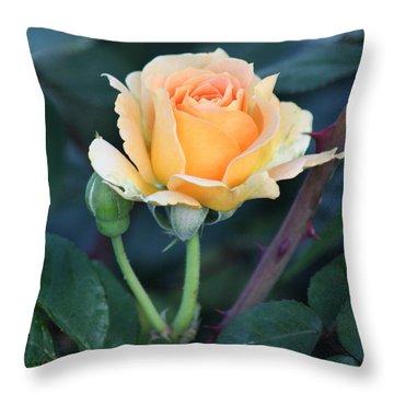 Peach Rose 3 Throw Pillow