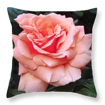 Peach Rose Throw Pillow by Rona Black