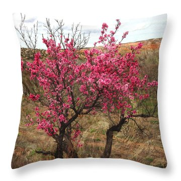 Peach Trees In Bloom Chimayo Throw Pillow