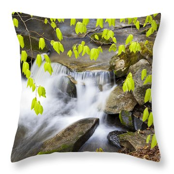 Peacham Brook Spring Throw Pillow