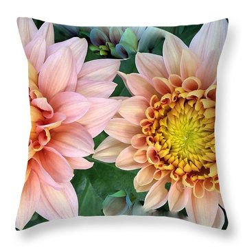Peachy Chrysanthemums Throw Pillow