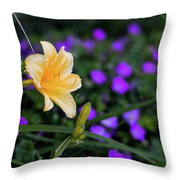 Peachy Purple Throw Pillow